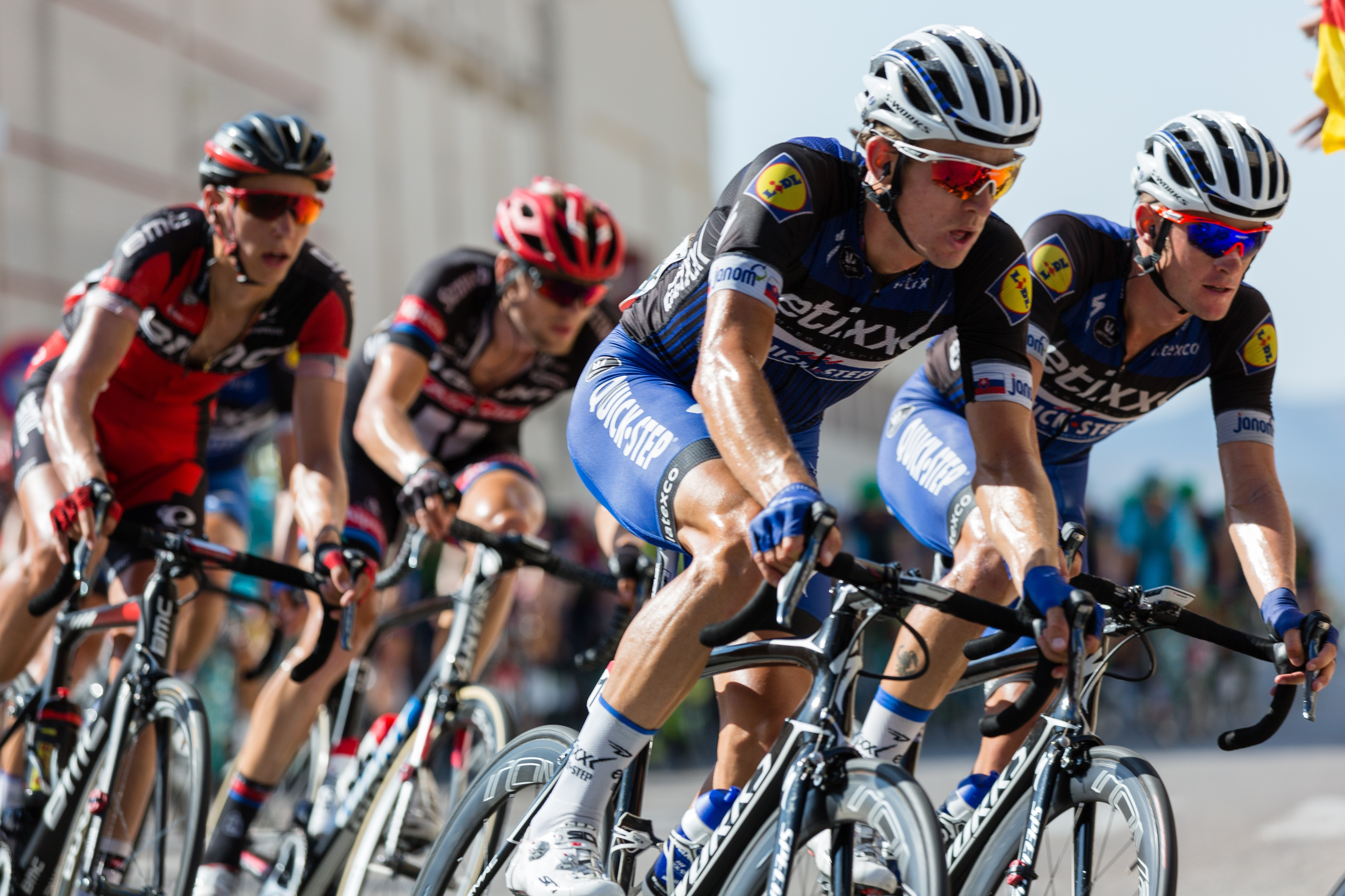 Cyclists in a bicycle race
