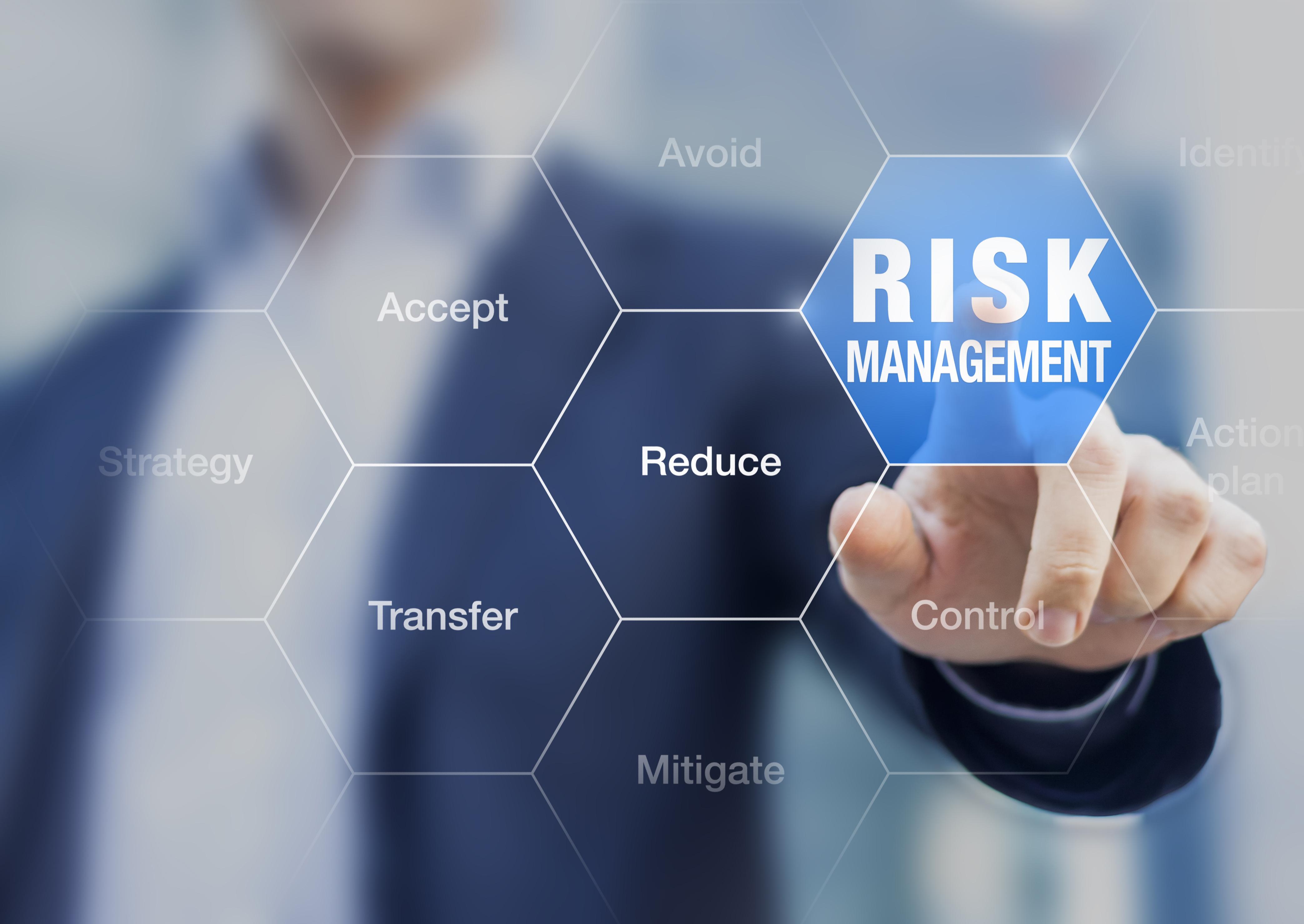 Risk management definition