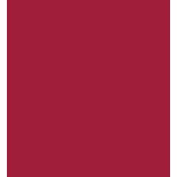 Digital image of doctor